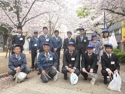 まちぴか桜.jpg